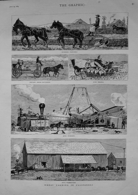 Wheat Farming in California. 1883.