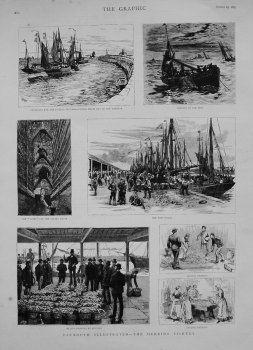 Yarmouth Illustrated - The Herring Fishery. 1883.