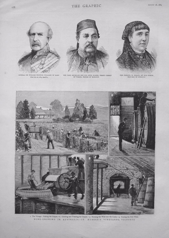 Wine-Growing in Australia - St. Hubert's Vineyards, Victoria. 1883.