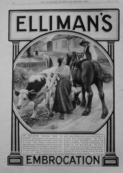 Elliman's Embrocation. 1913.