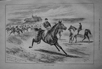 """""""Not A Boy's Horse."""" 1885"""