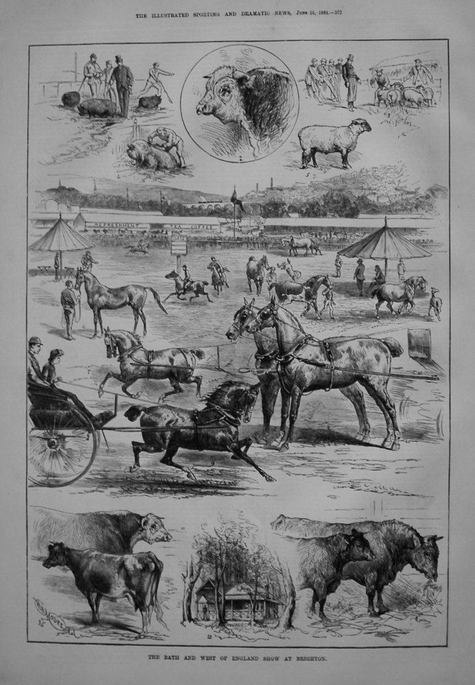 Bath and West of England Show at Brighton. 1885