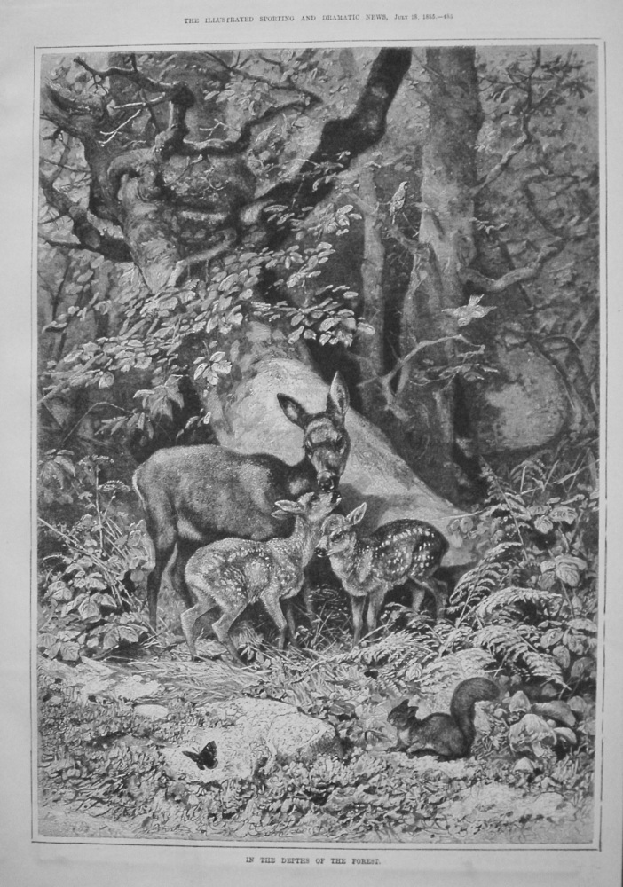 In The Depths Of The Forest. 1885
