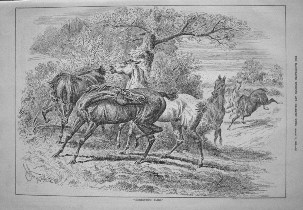 """Tormenting Flies."" 1885"