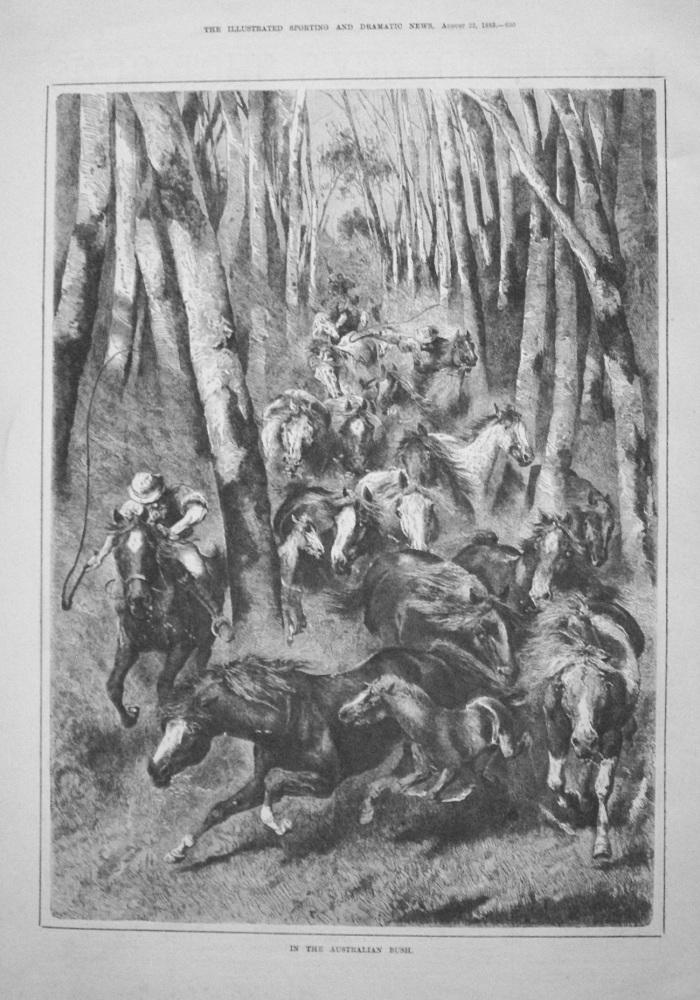 In The Australian Bush. 1885