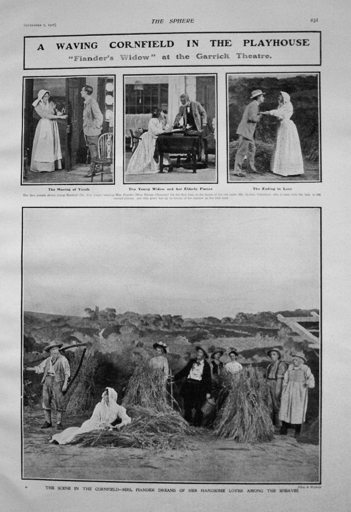 """A Waving Cornfield in the Playhouse. """"Fiander's Widow"""" at the Garrick Theatre. 1907"""