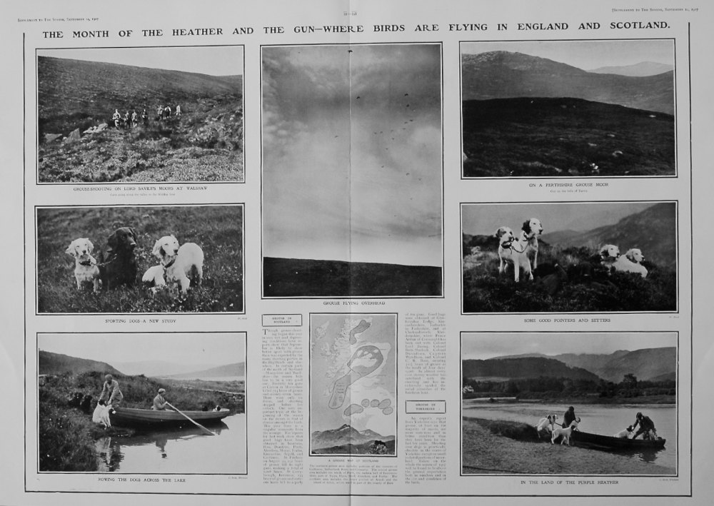 The Sphere, September 14th, 1907,  (Supplement) :  The Month of the Heather and the Gun.
