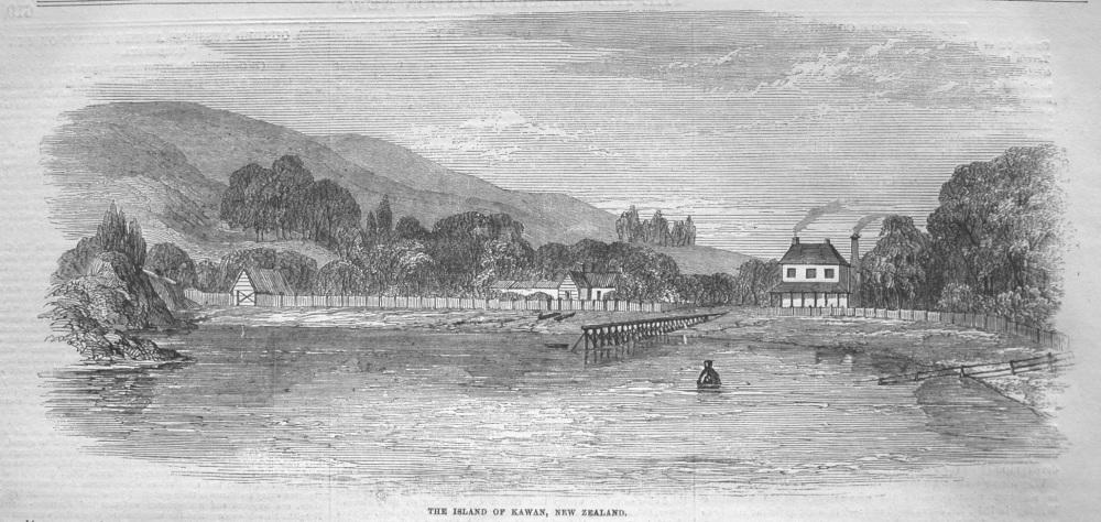 Island of Kawan, New Zealand. 1855