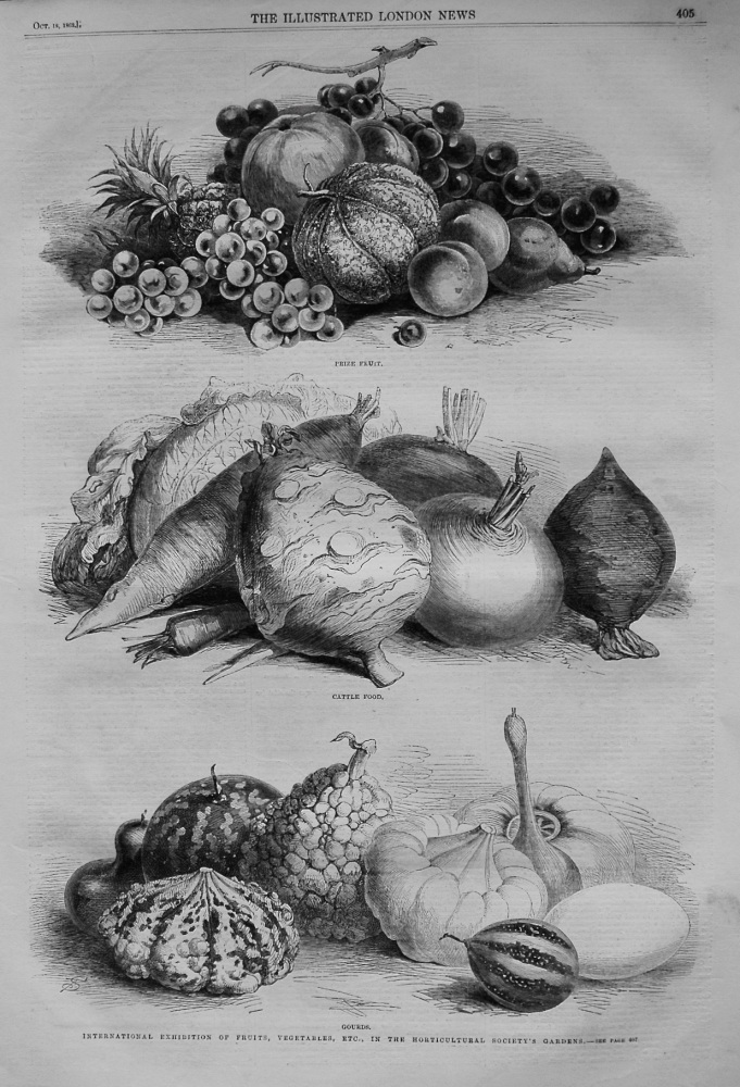International Exhibition of Fruits, Vegetables, Etc., in the Horticultural Society's Gardens. 1862