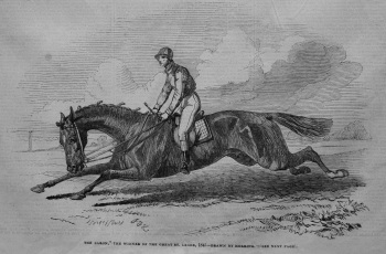 """The Baron,"" the Winner of the Great St. Leger, 1845- Drawn by Herring."