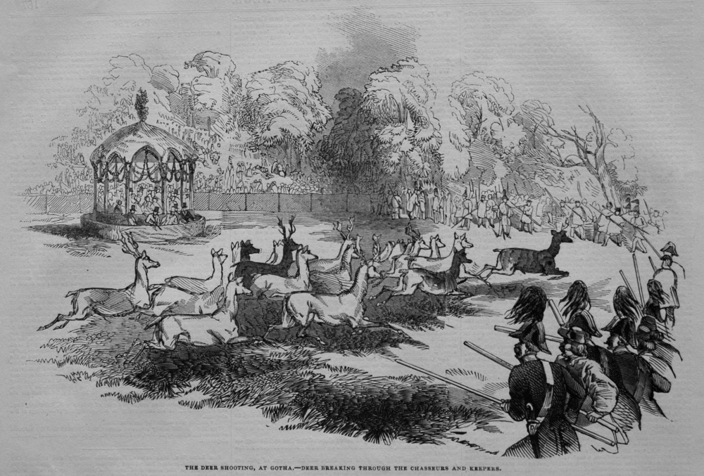 The Deer Shooting, at Gotha.- Deer Breaking Through The Chasseurs and Keepers. 1845