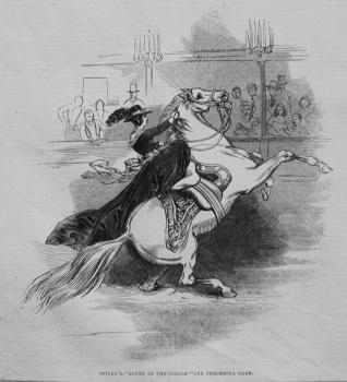 Astley's. - Scene in the Circle. 1845