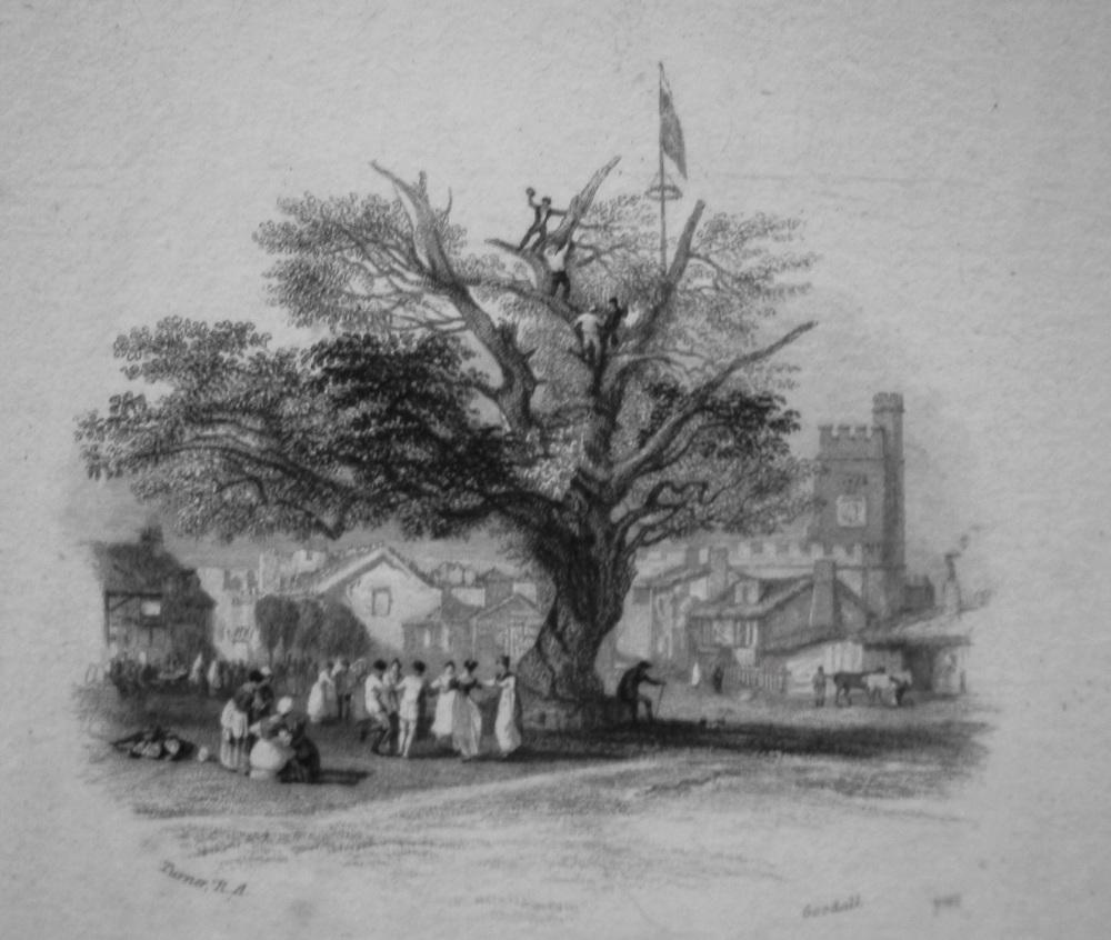 An Old Oak. 1833
