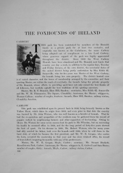 Foxhounds of Ireland.