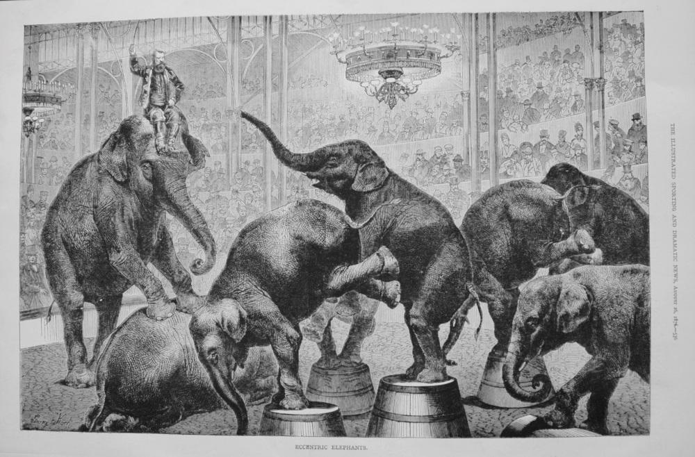 Eccentric Elephants. 1876