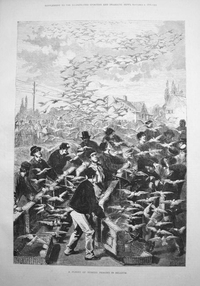 A Flight of Homing Pigeons in Belgium. 1876