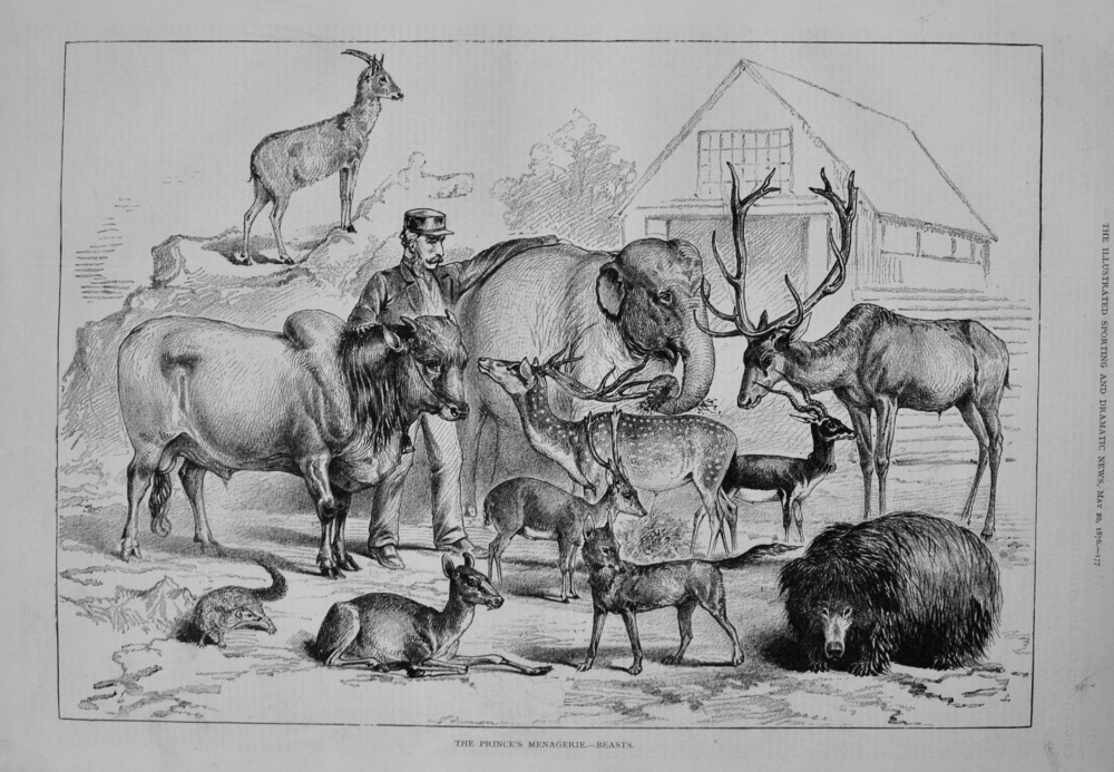 The Prince's Menagerie.- Beasts. 1876