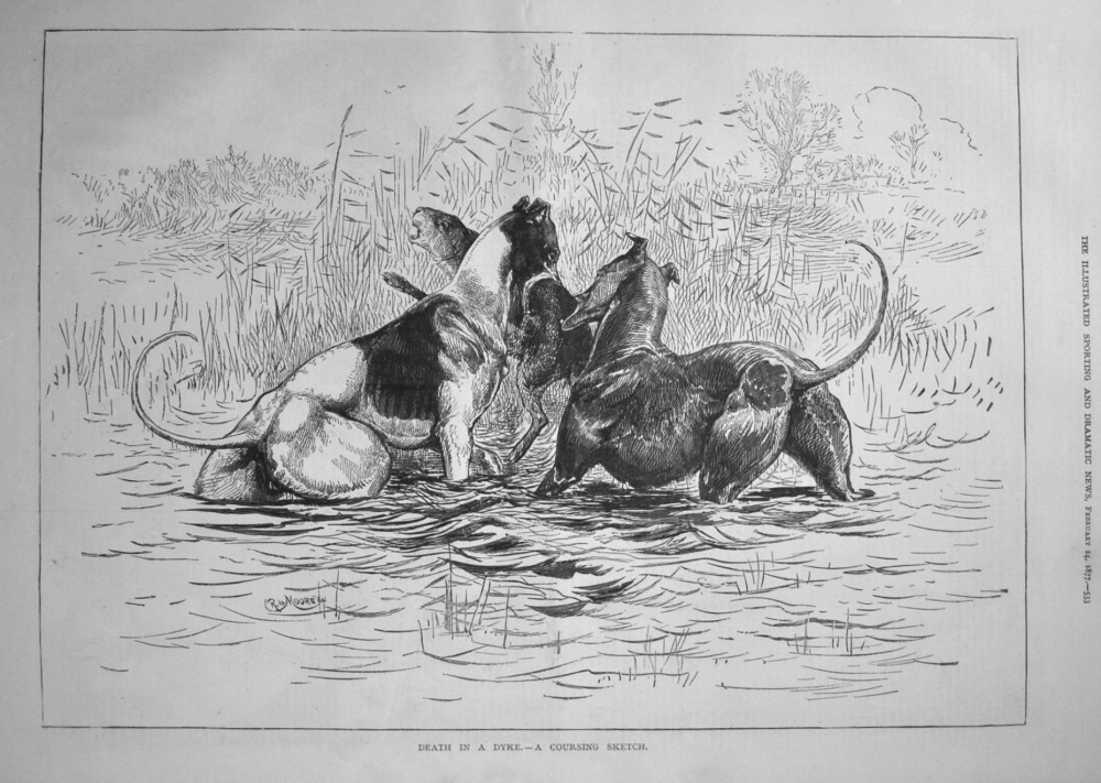 Death in a Dyke. -A Coursing Sketch. 1877