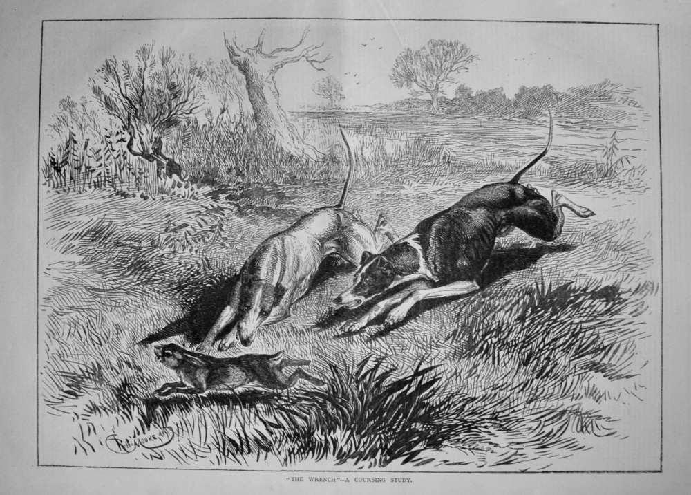 """The Wrench"" -A Coursing Study. 1877"