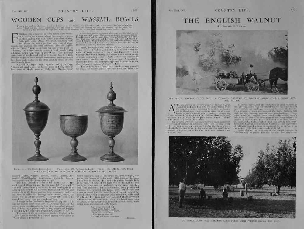 """Wooden Cups and Wassail Bowls."" and ""The English Walnut."""
