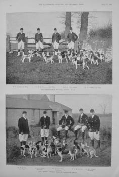 Trinity College Beagles, Cambridge, 1894-5.