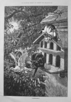 """""""Moonlighters !"""" 1887"""