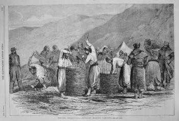 Before Sebastopol.- Zouaves Making Gabions. 1855