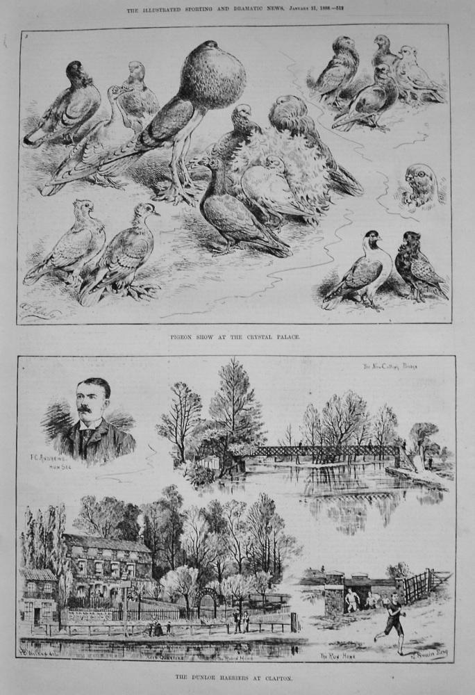 Dunloe Harriers at Clapton. 1888