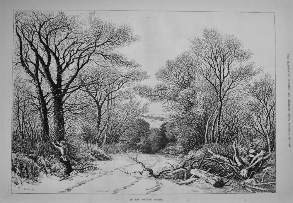 In The Winter Woods. 1887