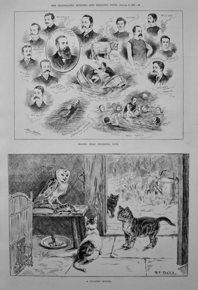 Ealing Dean Swimming Club. 1887