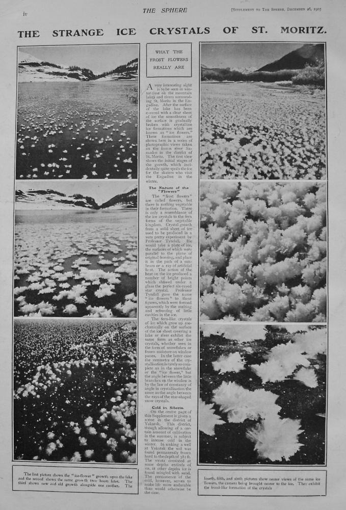 The Strange Ice Crystals of St. Moritz. 1903
