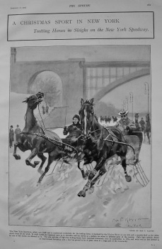 A Christmas Sport in New York : Trotting Horses in Sleighs on the New York Speedway. 1903