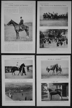 Horse Racing Photographs. 1905