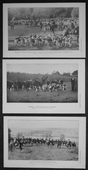 Hunting Photographs. 1905.