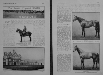 The King's Training Stable at Newmarket. 1905