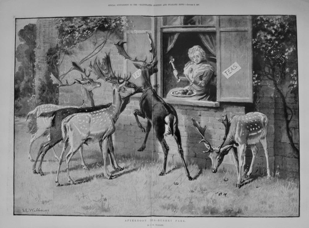 Afternoon Tea - Bushey Park. By S. E. Waller.