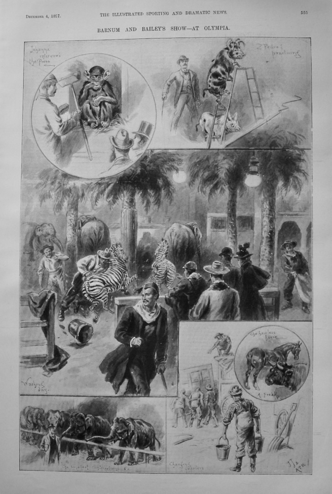 Barnum and Bailey's Show - At Olympia. 1897