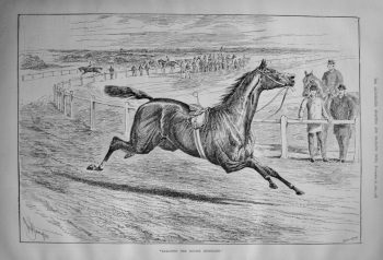 """""""Galloped the Course Riderless."""" 1886"""