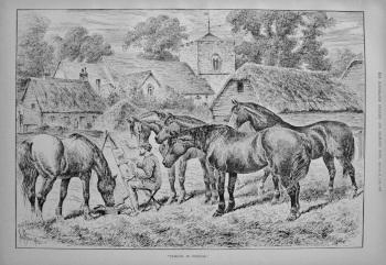 """Friends in Council."" 1886"