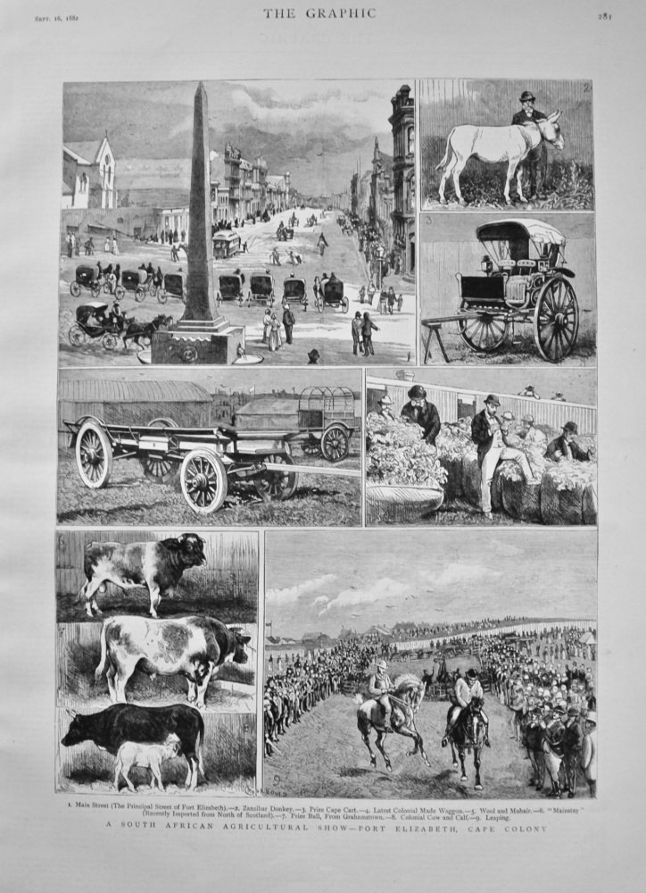 A South African Agricultural Show - Port Elizabeth, Cape Colony. 1882