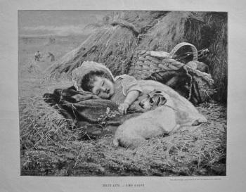 Beaux-Arts. - Bien Garde. 1890