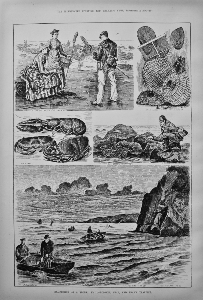 Sea-Fishing as a Sport. No. 11.- Lobster, Crab, and Prawn Trapping. 1886