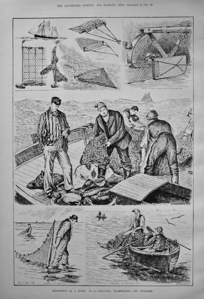 Sea-Fishing as a Sport. No. 12.- Trawling, Trammelling, and Dragging.