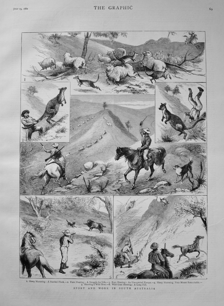 Sport and Work in South Australia. 1882