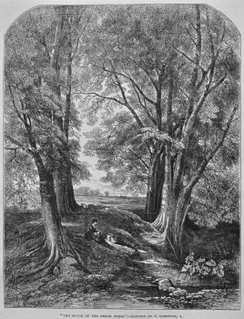 """""""The Shade of the Beech Trees.""""- Painted by T. Creswick. 1849."""