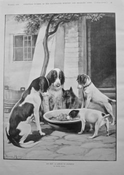 Too Hot -A Lesson in Patience. 1899.