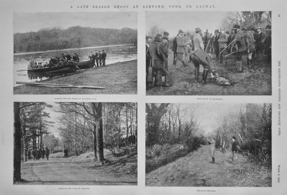 A Late Season Shoot at Ashford, Cong, Co. Galway. 1900.