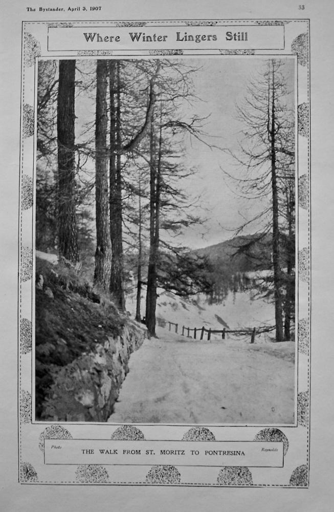Where Winter Lingers Still : The Walk from St. Moritz to Pontresina. 1907.