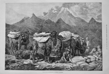 Transporting Merchandise in Eastern Turkestan. 1875.