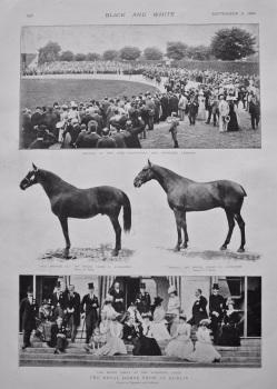 The Royal Horse Show at Dublin. 1898.